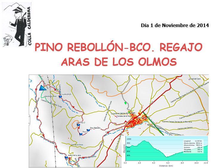 Aras-de-los-Olmos-Pino-Rebollón-Bco.-Regajo-01-11-2014